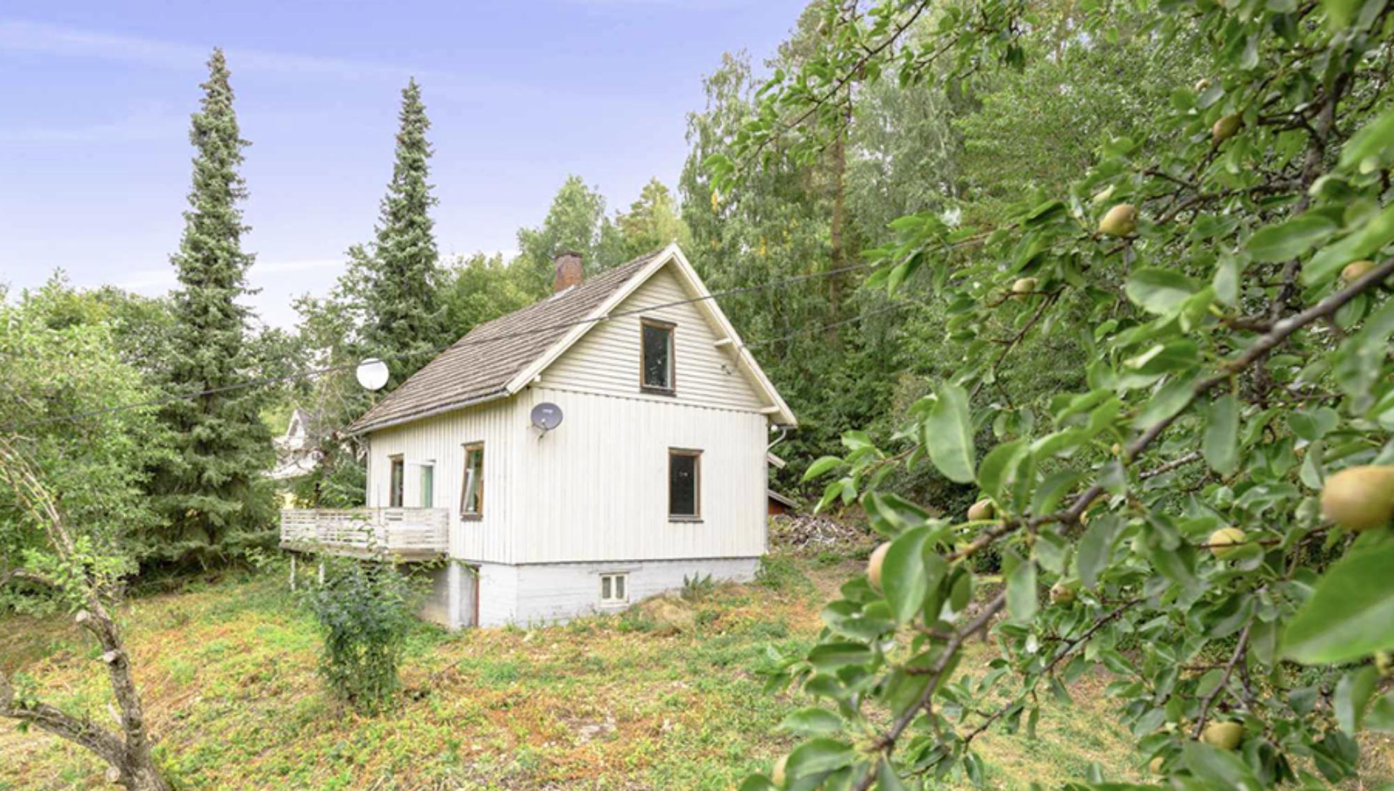 Helgøya eventyr hagen 圣岛桃园
